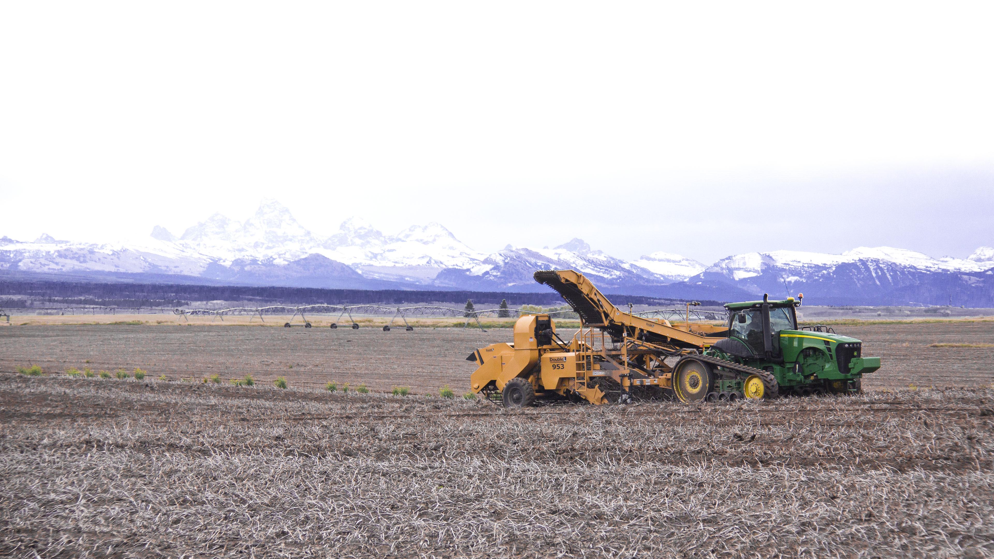 potatoes harvesting machine